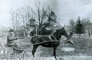 Волышово: лошади и старинная усадьба - фото Copy-of-img029_wm-300x197, главная Конные истории Конюшня Разное , конный журнал EquiLIfe