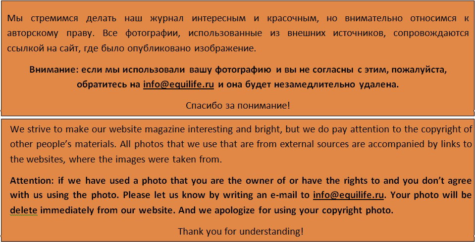 Виктория Борисова - фото copiright, , конный журнал EquiLIfe