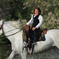 Лошади Камарга - фото DSC_8928_wm-200x200, главная Поведение лошади Разное Фото , конный журнал EquiLIfe
