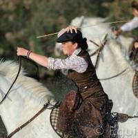 Лошади Камарга - фото DSC_9075_wm-200x200, главная Поведение лошади Разное Фото , конный журнал EquiLIfe