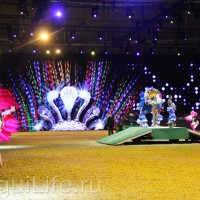 Фоторепортаж: Эквитана HOП TOП шоу «FESTIVALLO» - фото IMG_2356_resize_wm-200x200, главная Разное События Фото , конный журнал EquiLIfe