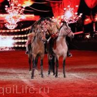 Фоторепортаж: Эквитана HOП TOП шоу «FESTIVALLO» - фото IMG_2415_resize_wm-200x200, главная Разное События Фото , конный журнал EquiLIfe