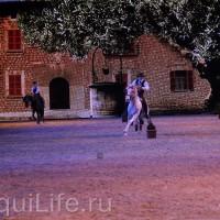 Фоторепортаж: Эквитана HOП TOП шоу «FESTIVALLO» - фото IMG_2550_resize_wm-200x200, главная Разное События Фото , конный журнал EquiLIfe