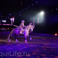 Фоторепортаж: Эквитана HOП TOП шоу «FESTIVALLO» - фото IMG_2602_resize_wm-200x200, главная Разное События Фото , конный журнал EquiLIfe