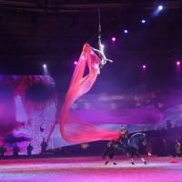 Фоторепортаж: Эквитана HOП TOП шоу «FESTIVALLO» - фото IMG_2662_resize_wm-200x200, главная Разное События Фото , конный журнал EquiLIfe