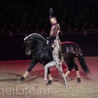 Фоторепортаж: Эквитана HOП TOП шоу «FESTIVALLO» - фото IMG_2664_resize_wm-200x200, главная Разное События Фото , конный журнал EquiLIfe