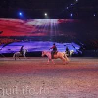 Фоторепортаж: Эквитана HOП TOП шоу «FESTIVALLO» - фото IMG_2702_resize_wm-200x200, главная Разное События Фото , конный журнал EquiLIfe
