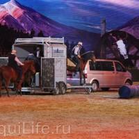 Фоторепортаж: Эквитана HOП TOП шоу «FESTIVALLO» - фото IMG_2738_resize_wm-200x200, главная Разное События Фото , конный журнал EquiLIfe