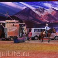 Фоторепортаж: Эквитана HOП TOП шоу «FESTIVALLO» - фото IMG_2748_resize_wm-200x200, главная Разное События Фото , конный журнал EquiLIfe