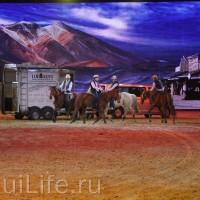 Фоторепортаж: Эквитана HOП TOП шоу «FESTIVALLO» - фото IMG_2756_resize_wm-200x200, главная Разное События Фото , конный журнал EquiLIfe