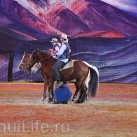 Фоторепортаж: Эквитана HOП TOП шоу «FESTIVALLO» - фото IMG_2773_resize_wm-200x200, главная Разное События Фото , конный журнал EquiLIfe