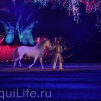 Фоторепортаж: Эквитана HOП TOП шоу «FESTIVALLO» - фото IMG_2858_resize_wm-200x200, главная Разное События Фото , конный журнал EquiLIfe