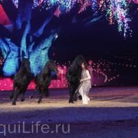 Фоторепортаж: Эквитана HOП TOП шоу «FESTIVALLO» - фото IMG_2935_resize_wm-200x200, главная Разное События Фото , конный журнал EquiLIfe