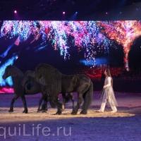 Фоторепортаж: Эквитана HOП TOП шоу «FESTIVALLO» - фото IMG_2938_resize_wm-200x200, главная Разное События Фото , конный журнал EquiLIfe