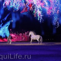 Фоторепортаж: Эквитана HOП TOП шоу «FESTIVALLO» - фото IMG_2975_resize_wm-200x200, главная Разное События Фото , конный журнал EquiLIfe