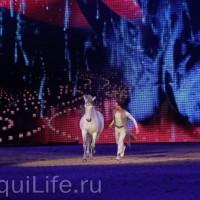 Фоторепортаж: Эквитана HOП TOП шоу «FESTIVALLO» - фото IMG_2976_resize_wm-200x200, главная Разное События Фото , конный журнал EquiLIfe