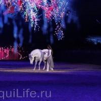 Фоторепортаж: Эквитана HOП TOП шоу «FESTIVALLO» - фото IMG_2994_resize_wm-200x200, главная Разное События Фото , конный журнал EquiLIfe