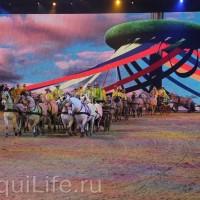 Фоторепортаж: Эквитана HOП TOП шоу «FESTIVALLO» - фото IMG_3007_resize_wm-200x200, главная Разное События Фото , конный журнал EquiLIfe