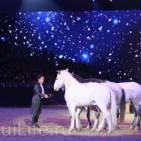 Фоторепортаж: Эквитана HOП TOП шоу «FESTIVALLO» - фото IMG_3067_resize_wm-200x200, главная Разное События Фото , конный журнал EquiLIfe