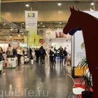 Фоторепортаж: Эквитана, картинки с выставки - фото IMG_004_wm-200x200, главная Разное События Фото , конный журнал EquiLIfe