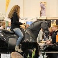 Фоторепортаж: Эквитана, картинки с выставки - фото IMG_017_wm-200x200, главная Разное События Фото , конный журнал EquiLIfe