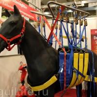 Фоторепортаж: Эквитана, картинки с выставки - фото IMG_025_wm-200x200, главная Разное События Фото , конный журнал EquiLIfe