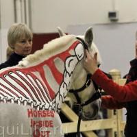 Фоторепортаж: Эквитана, картинки с выставки - фото IMG_030_wm-200x200, главная Разное События Фото , конный журнал EquiLIfe