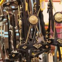 Фоторепортаж: Эквитана, картинки с выставки - фото IMG_039_wm-200x200, главная Разное События Фото , конный журнал EquiLIfe