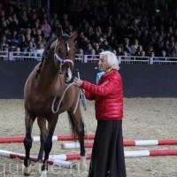 Фоторепортаж: Эквитана, картинки с выставки - фото IMG_1034_wm-200x200, главная Разное События Фото , конный журнал EquiLIfe