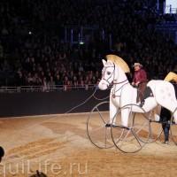 Фоторепортаж: Эквитана, картинки с выставки - фото IMG_1055_wm-200x200, главная Разное События Фото , конный журнал EquiLIfe