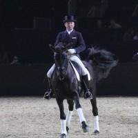 Фоторепортаж: Эквитана, картинки с выставки - фото IMG_2225_wm-200x200, главная Разное События Фото , конный журнал EquiLIfe