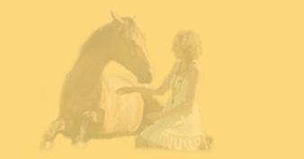 Пятые видеосоревнования в стиле либерти - фото , Новости , конный журнал EquiLIfe