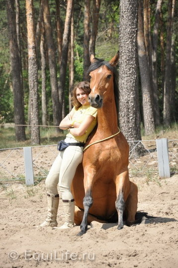 Анита Крылова: идея видеосоревнований возникла спонтанно - фото 6_Ahnz9HMUY_wm, главная Интервью Тренинг , конный журнал EquiLIfe