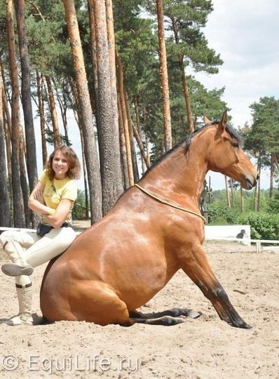 Анита Крылова: идея видеосоревнований возникла спонтанно - фото cHC0_gBQpsE11_wm, главная Интервью Тренинг , конный журнал EquiLIfe