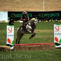 Фестиваль лошадей породы лузитано в Португалии - фото 12_wm-200x200, главная Разное События Фото , конный журнал EquiLIfe