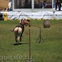 Фестиваль лошадей породы лузитано в Португалии - фото 13_wm-200x200, главная Разное События Фото , конный журнал EquiLIfe
