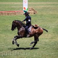 Фестиваль лошадей породы лузитано в Португалии - фото 14_wm-200x200, главная Разное События Фото , конный журнал EquiLIfe