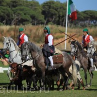 Фестиваль лошадей породы лузитано в Португалии - фото 18_wm-200x200, главная Разное События Фото , конный журнал EquiLIfe