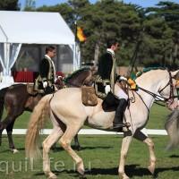 Фестиваль лошадей породы лузитано в Португалии - фото 22-представители-моргадо-лузитано_wm-200x200, главная Разное События Фото , конный журнал EquiLIfe