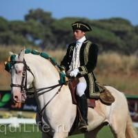 Фестиваль лошадей породы лузитано в Португалии - фото 24_wm-200x200, главная Разное События Фото , конный журнал EquiLIfe