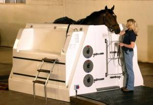 Гидротерапия   для   лошадей  - фото ECB-Spa-300x206, главная Здоровье лошади Тренинг , конный журнал EquiLIfe