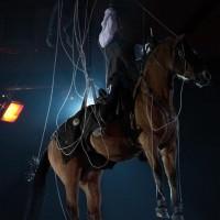 Фоторепортаж: Конная Алхимия Марио Люраши - фото 16-200x200, главная Конные истории Разное Фото , конный журнал EquiLIfe