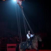 Фоторепортаж: Конная Алхимия Марио Люраши - фото 18-200x200, главная Конные истории Разное Фото , конный журнал EquiLIfe