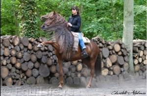 Клеменс Февр (Clémence Faivre) - фото 352_wm-300x196, главная Конные истории Разное , конный журнал EquiLIfe