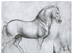 Семинары: позвоночник лошади и конная офтальмология - фото leonardo-da-vinci-198_thumb, Новости , конный журнал EquiLIfe