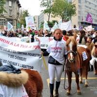 Протест конных школ во Франции - фото 2_wm-200x200, Новости , конный журнал EquiLIfe