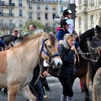 Протест конных школ во Франции - фото 3_wm-200x200, Новости , конный журнал EquiLIfe