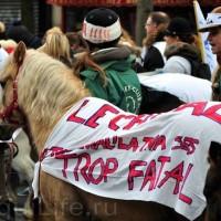 Протест конных школ во Франции - фото 4_wm-200x200, Новости , конный журнал EquiLIfe