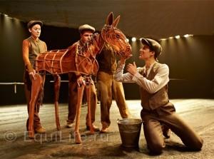 """""""Боевой конь"""" из кинотеатра на сцену - фото gefaehrten-pony-564x421_wm-300x223, главная Новости Разное События , конный журнал EquiLIfe"""