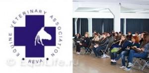 Семинар Актуальные проблемы ветеринарной медицины лошадей 2014 - фото _wm-300x147, Новости , конный журнал EquiLIfe